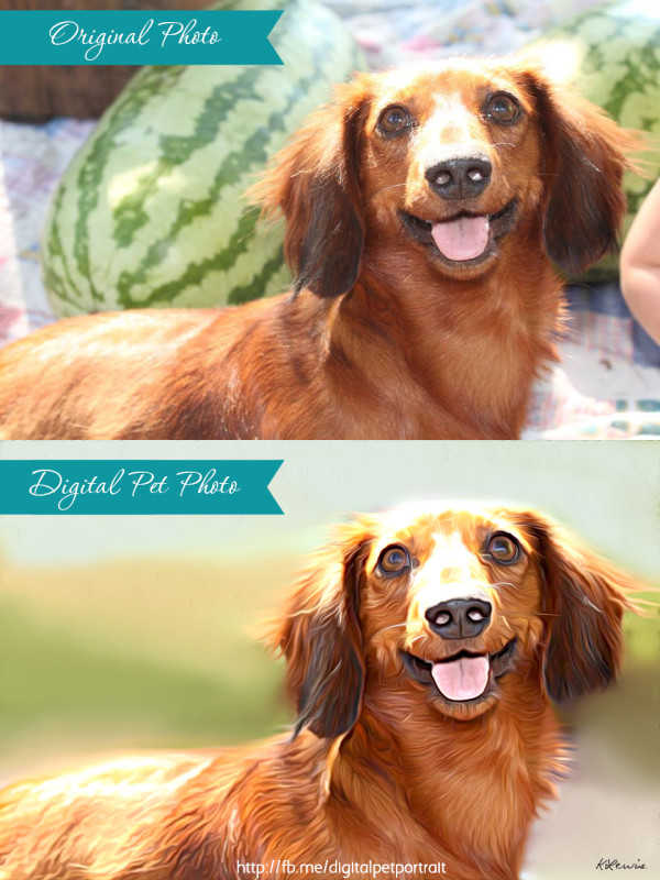 Maggie-Before-and-After